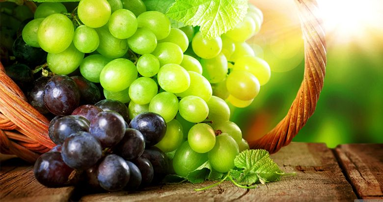 SOME-WONDERFUL-BENEFITS-OF-QUEEN-OF-FRUITS--GRAPES