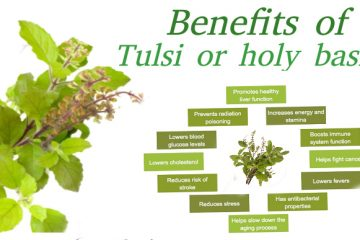 Health-benefits-tulsi